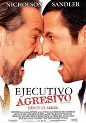 Ver Película Ejecutivo Agresivo (2003)