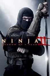 Ver Película Ninja 2 : La Sombra de La Muerte (2013)