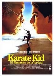 Ver Película Karate Kid (1984)