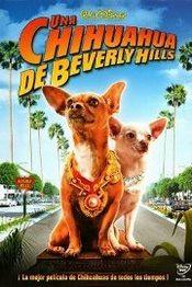 Una Chihuahua en Beverly Hills