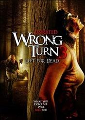 Ver Película Camino hacia el Terror 3 (2009)