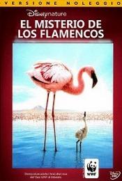 El Misterio de los Flamencos