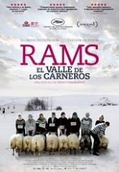 Ver Película Rams (El valle de los carneros) (2015)