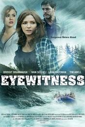 Ver Película Testigo presencial (2015)