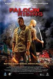 Ver Película Falcon Rising (2014)