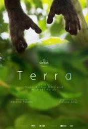 Ver Película Terra (2015)