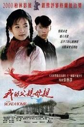 Ver Película El camino a casa (1999)