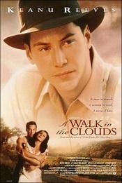 Ver Película Un Paseo por las Nubes (1995)