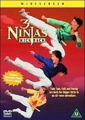 Tres pequeños ninjas 3