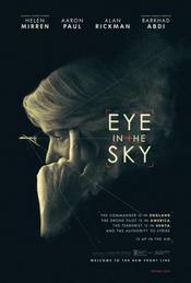 Ver Película Espias desde el cielo Pelicula (2015)