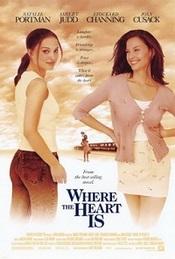 Ver Película La fuerza del amor (2000)