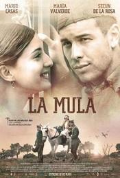 Ver Película La mula (2013)