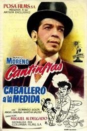 Ver Película Caballero a la Medida (1994)
