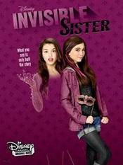 Ver Película La hermana invisible (2015)