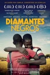 Ver Película Diamantes Negros (2013)