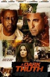 Ver Película Una verdad oscura (2012)