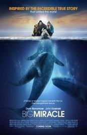 Ver Película Una aventura extraordinaria (2012)