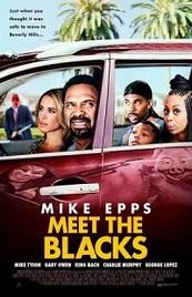 Ver Película Conozca a los negros (2016)