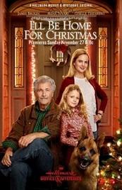 Ver Película Estare en casa para navidad (2016)