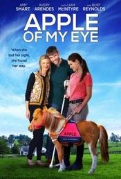 Ver Película La luz de mis ojos (2017)