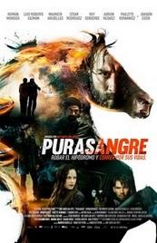Ver Película Purasangre (2016)