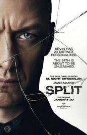 Ver Película Multiple (2016)