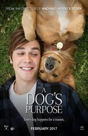 Ver Película Tu mejor amigo (2017)