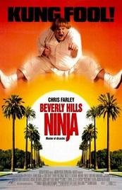 Ver Película Un Ninja en Beverly Hills (1997)