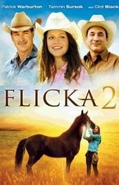 Ver Película Flicka 2 (2010)