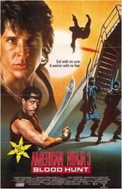 Ver Película El guerrero americano 3 (1989)