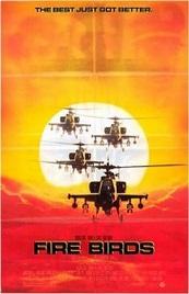 Ver Película Pajaros de fuego (1990)