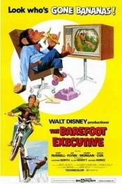 Ver Película Un ejecutivo muy mono (1971)