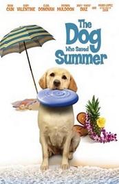 Ver Película El perro que salvo el verano (2015)