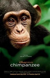Ver Película Chimpance (2012)