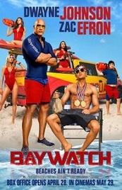 Ver Película Los vigilantes de la playa (2017)