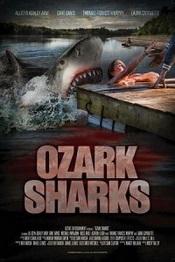 Ataque de tiburon de verano