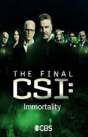 Ver Película CSI: Caso cerrado (2015)