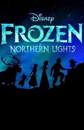 Ver Película LEGO Frozen: Luces de invierno (2016)