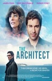 Ver Película El arquitecto (2016)