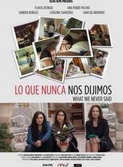 Ver Película Lo que nunca nos dijimos (2015)