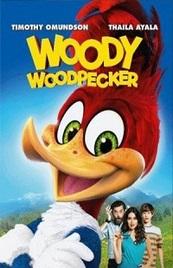 Ver Película El pájaro loco (2017)