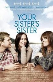 Ver Película El amigo de mi hermana (2011)