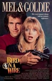 Dos pájaros a tiro