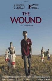Ver Película La herida (2017)