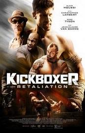 Ver Película Kickboxer: Contrataque (2018)