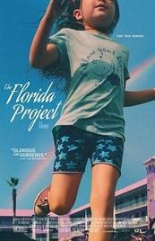 Ver Película El proyecto de Florida (2017)