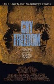 Ver Película Grita Libertad (1987)