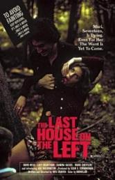 Ver Película La última casa a la izquierda (1972)