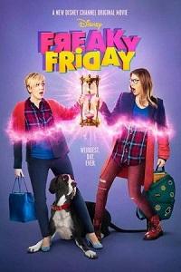 Ver Película Extraño Viernes (2018)