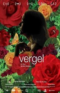 Ver Película Vergel (2017)
